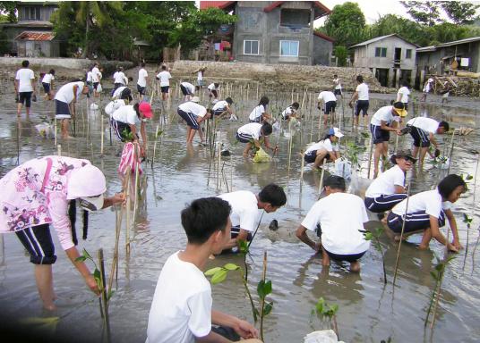 SVB hat das Aufforsten in sein Programm aufgenommen und sich als Partner die MAMA EARTH Foundation ausgewählt, welche bereits über eine Million Mangroven im Golf von Davao/Philippinen gepflanzt hat. (Bild 22 von 27)